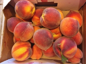 """Suncrest peaches right off the tree"""