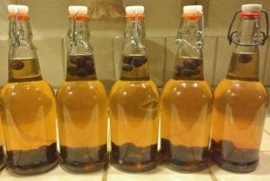 """Blueberry Kombocha fermenting"""