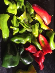 """Peppers ready to roast"""