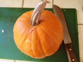 """'Sugar Pie Pumpkin"""""""