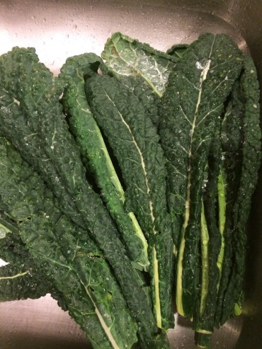 """Lacinato or Dinosaur Kale"""